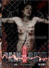 PAIN GATE〜異狂嗜虐〜