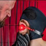 スパンデックスフード 全頭マスク