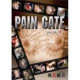 PAIN GATE ~向日葵の華~